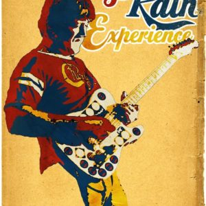 Terry Kath Experience movie