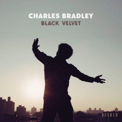 charles-bradley-black-velvet-cover-art1