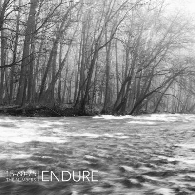 thenumbers-endure
