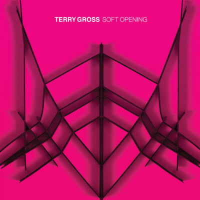 TerryGross-Soft Opening cover